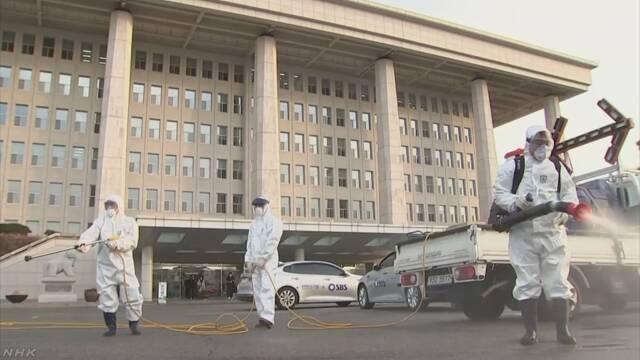 新型コロナ ウィルス 正確 正しい 情報 NHK マスク